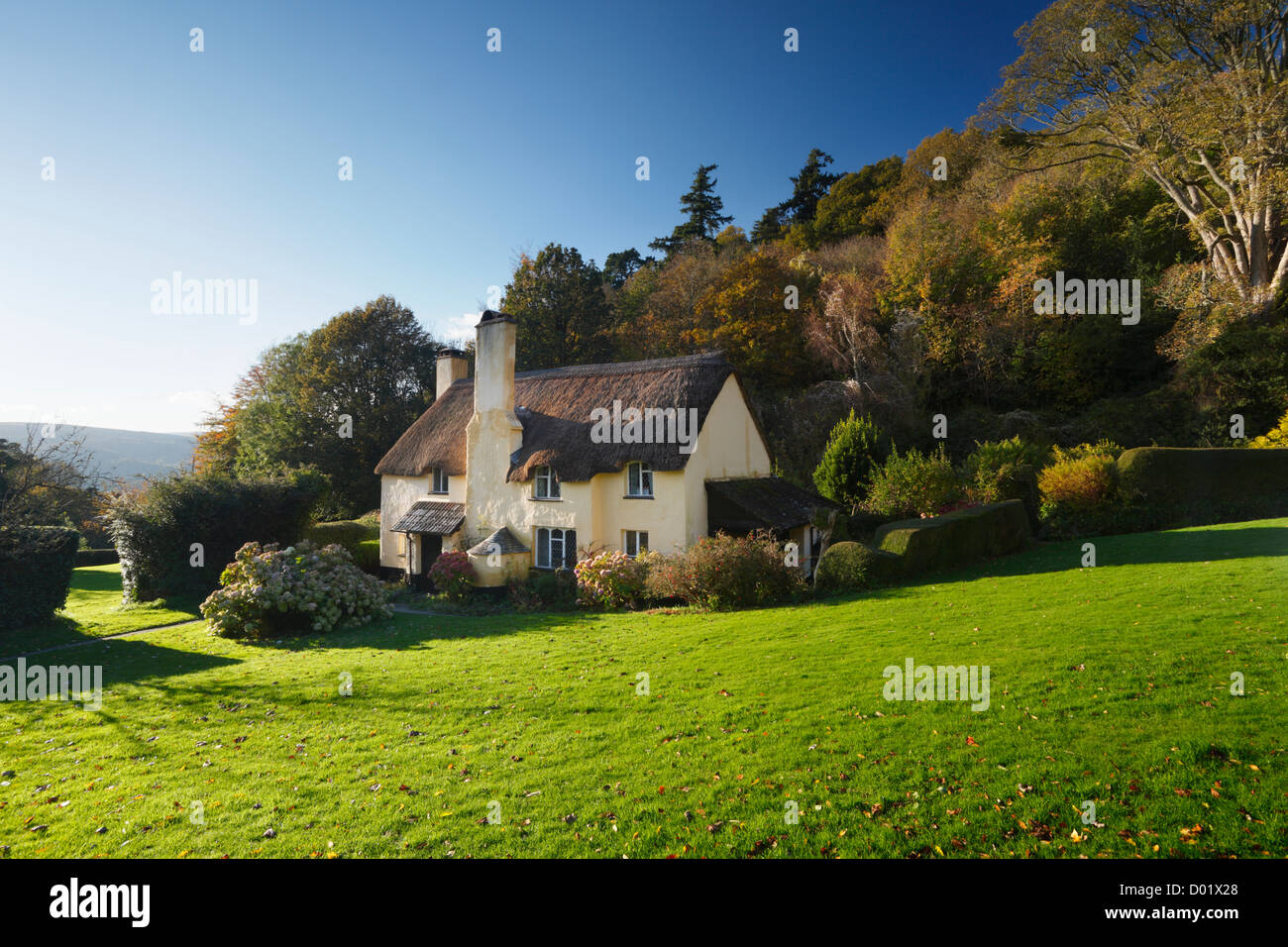 Thatched Cottage in Selworthy Village on The Holnicote Estate. Exmoor National Park. Somerset. England. UK. - Stock Image