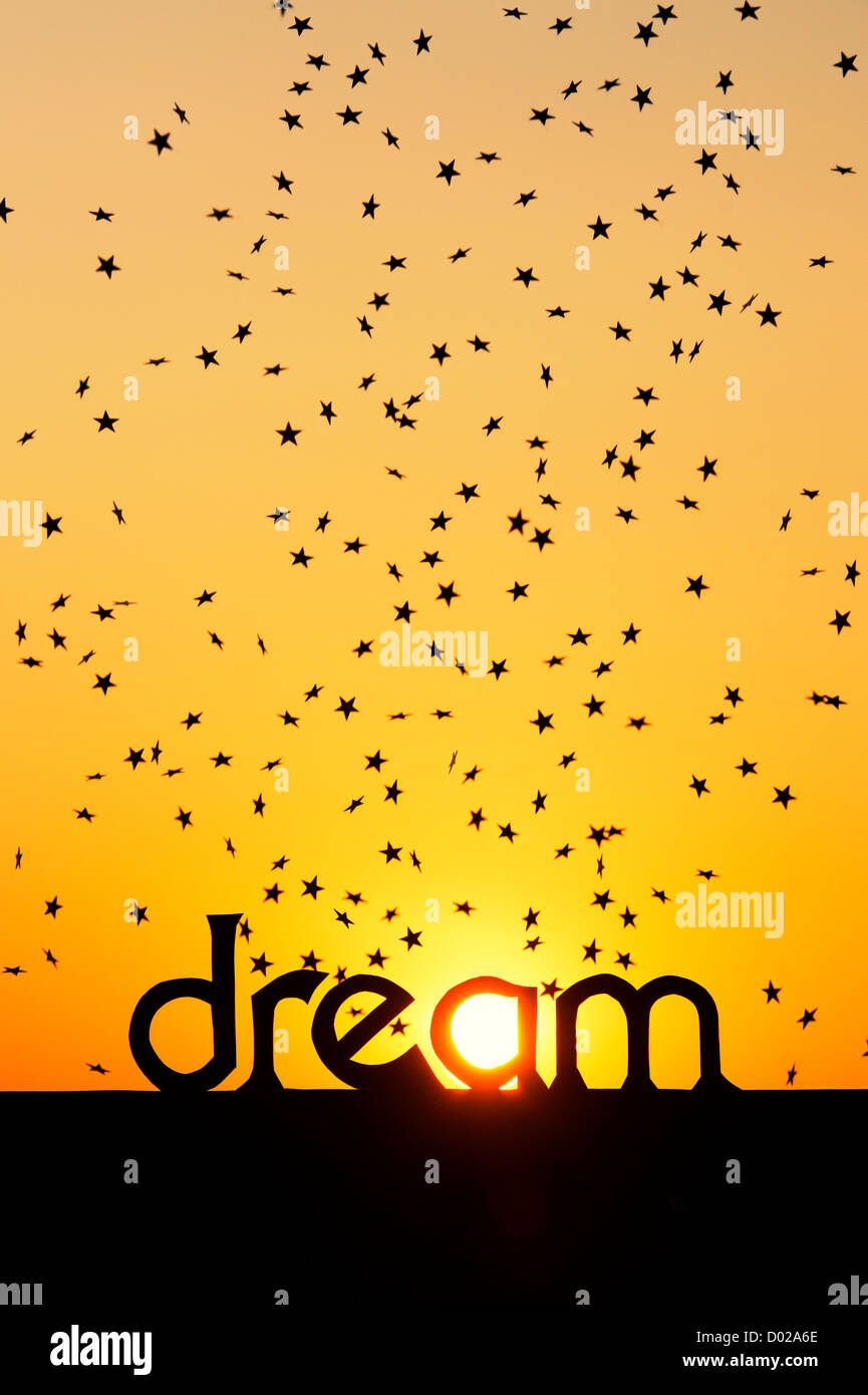 silhouette dream word and falling stars at sunset with sun in the a