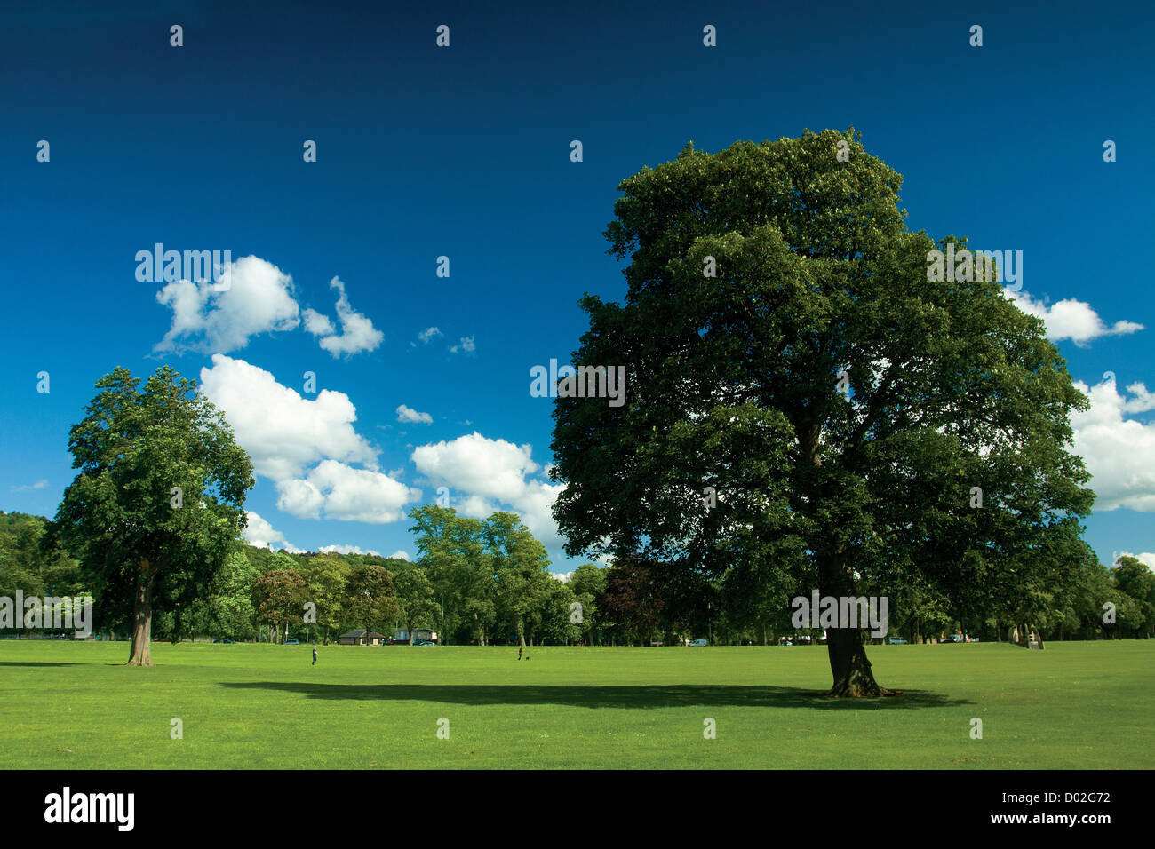 South Inch, Perth, Perthshire - Stock Image