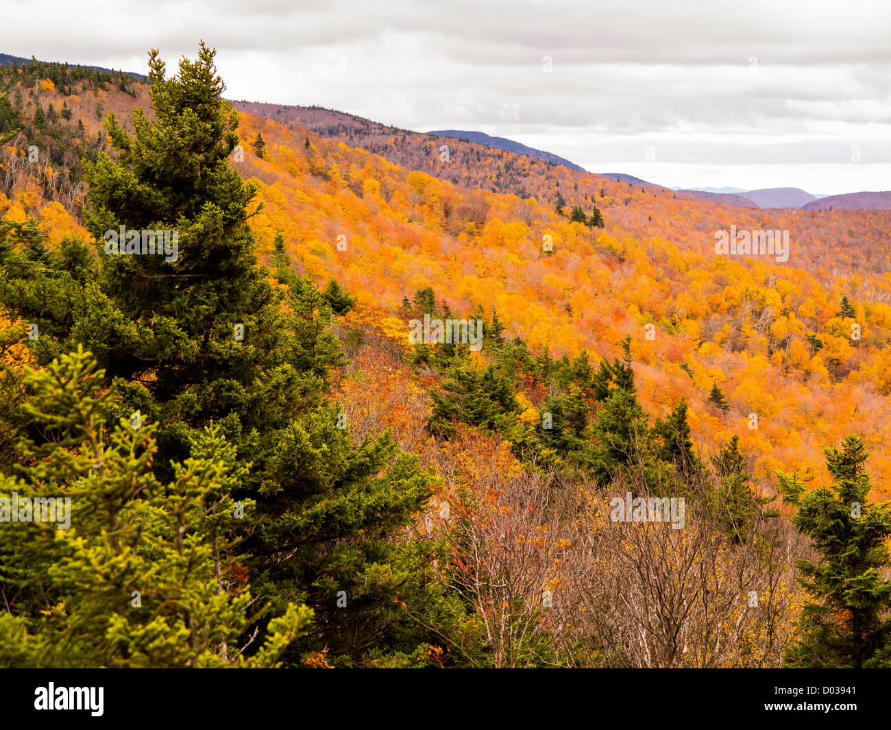 Green Mountains New England Autumn Stock Photos  U0026 Green