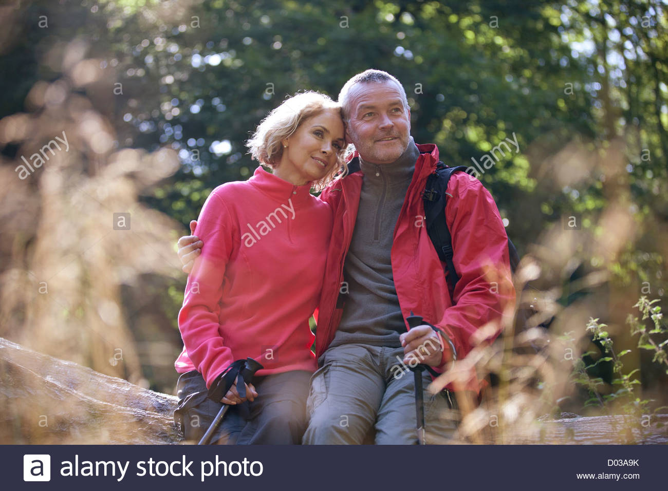 A mature couple sitting on a tree trunk looking at their surroundings - Stock Image