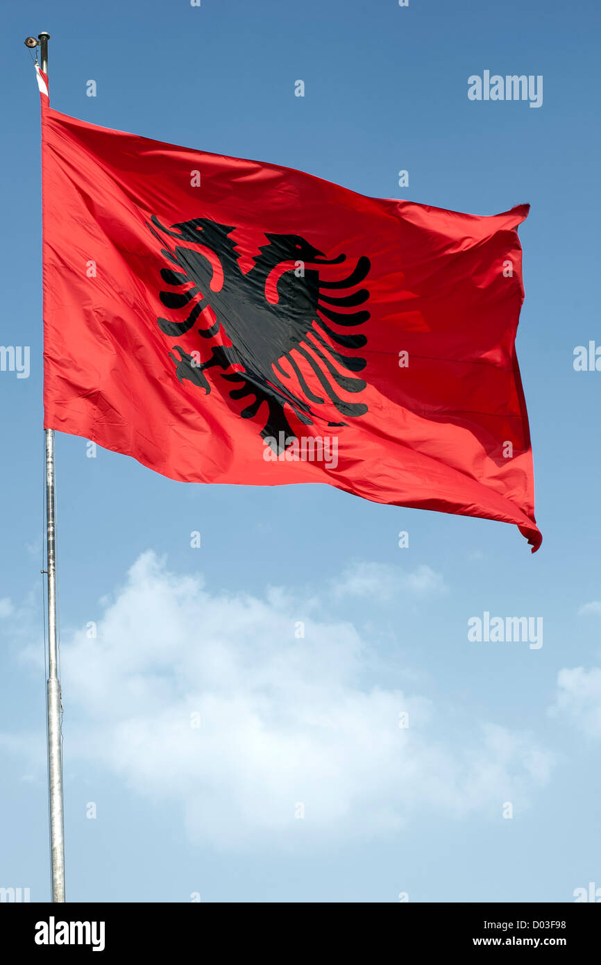 The flag of Albania. - Stock Image