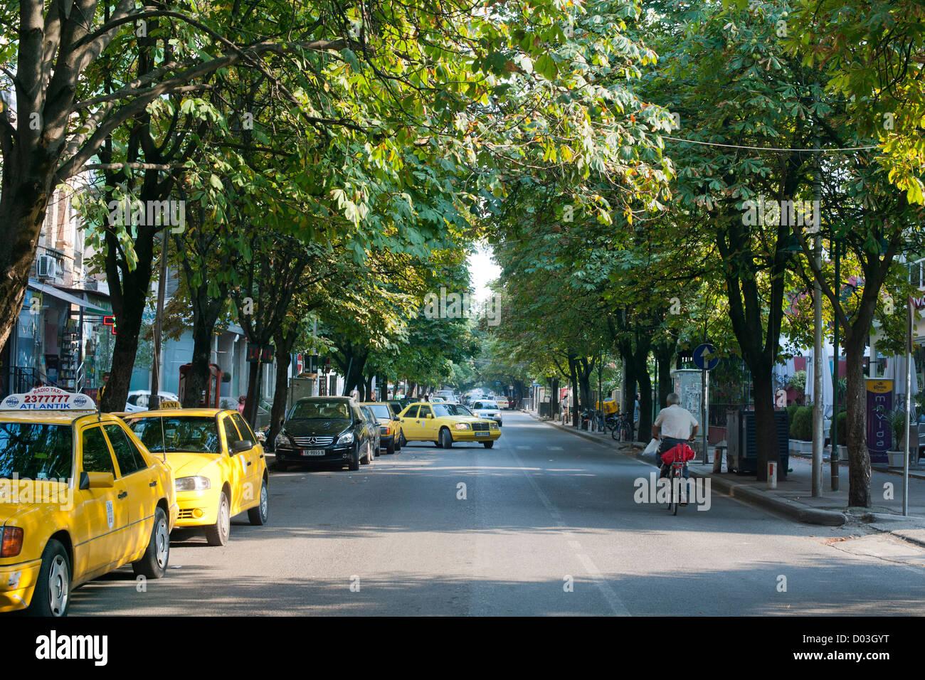 Tree-lined avenue in Tirana, the capital of Albania. - Stock Image