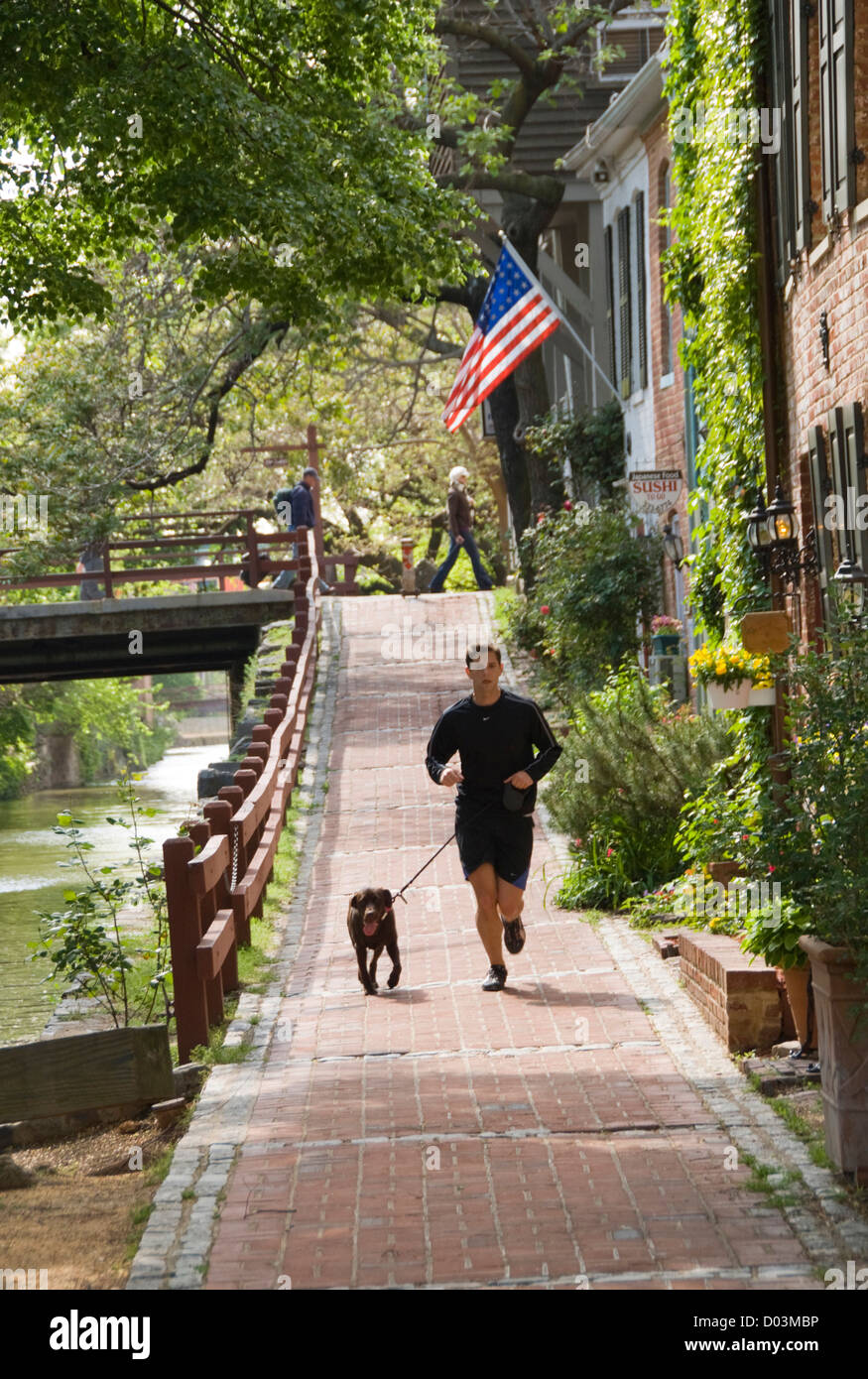 Washington DC, USA. Along the C&O Canal, or Chesapeake and Ohio Canal. Jogger with dog along the canal in Georgetown. - Stock Image