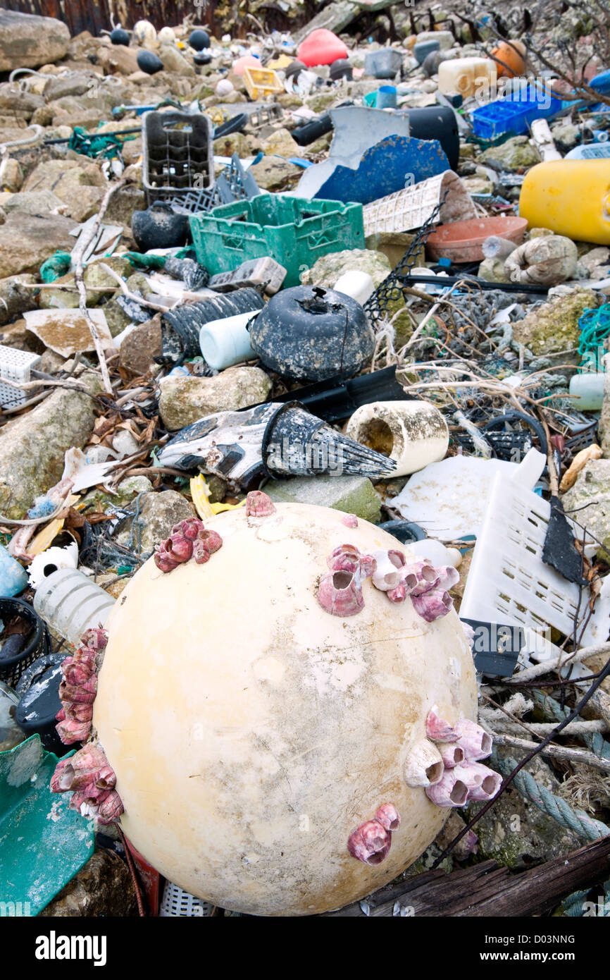 Fifty tons of plastic arrive at Midway each year brought by circular currents, known as the North Pacific Gyre. - Stock Image