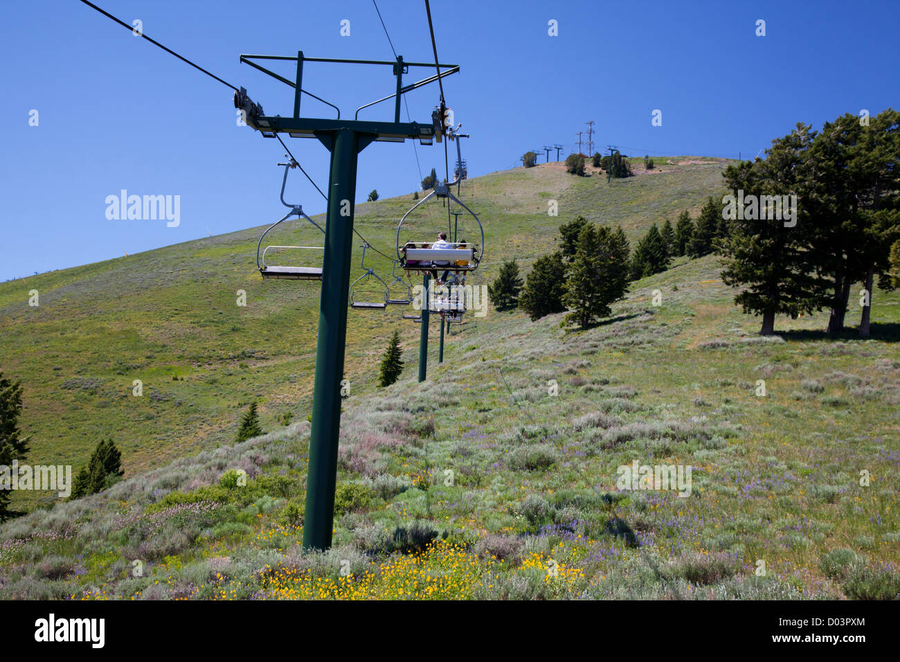 Idaho, Ketchum, Sun Valley, view from the Christmas Lift on Bald Mountain - Stock Image