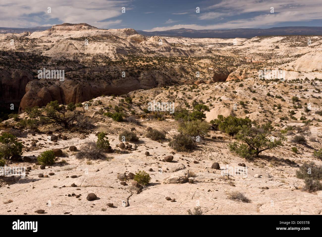 Grand Staircase-Escalante National Monument, looking across Calf Creek canyon, near Escalante, south Utah, USA Stock Photo