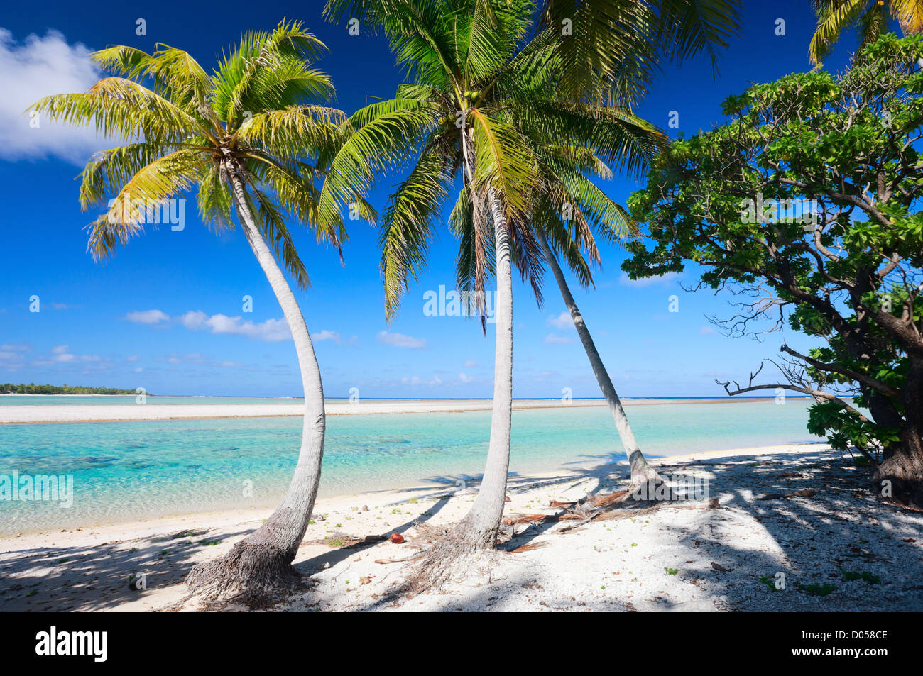 Perfect tropical beach - Stock Image