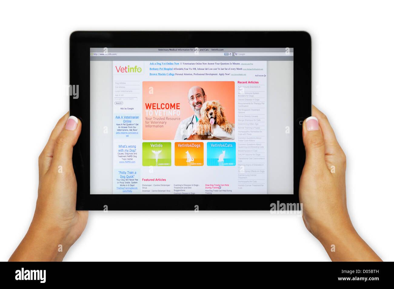 iPad screen showing VetInfo website - online veterinarian information - Stock Image