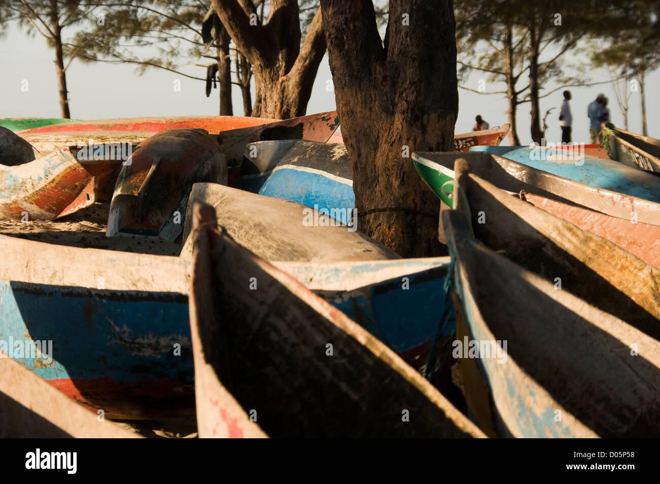 Canoe's beached under Casuarina trees, Nacala Mozambique. - Stock Image