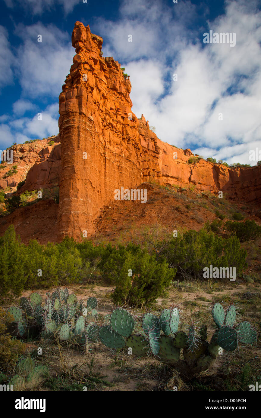 Sandstone wall and Prickly Pear cactus in Caprock Canyons State Park - Stock Image