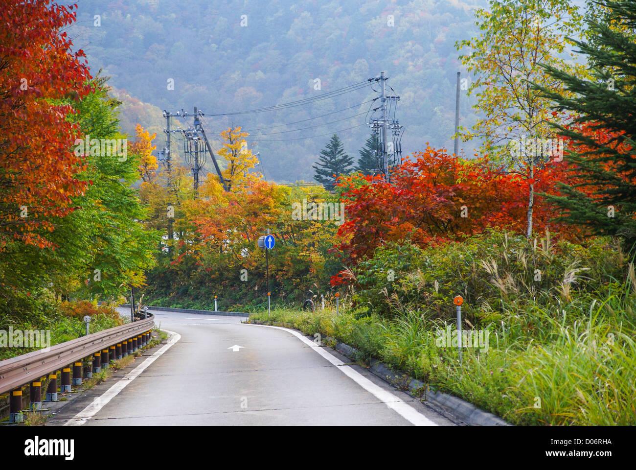 Japan, Honshu Island, Kanagawa Prefecture, Fuji Hakone National Park, - Stock Image
