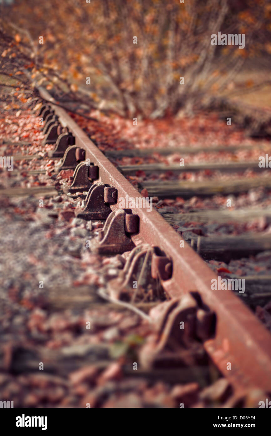 Autumn leaves on railway track, close up. - Stock Image