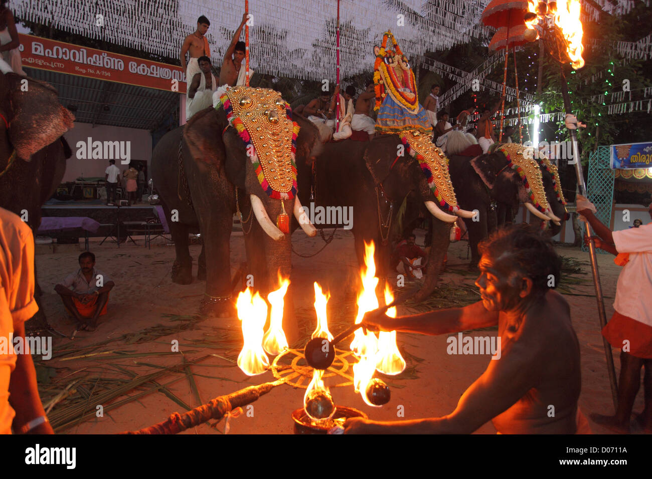 Formation of gold-caparisoned elephants at the Thrissur Pooram. Poorams are Hindu Temple-centered festivals popular - Stock Image