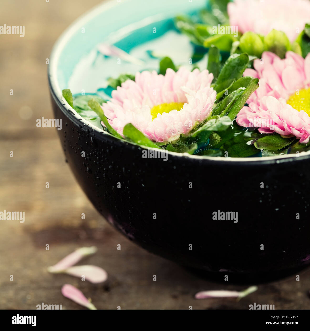 bowl of water and flowers in grunge style - Stock Image