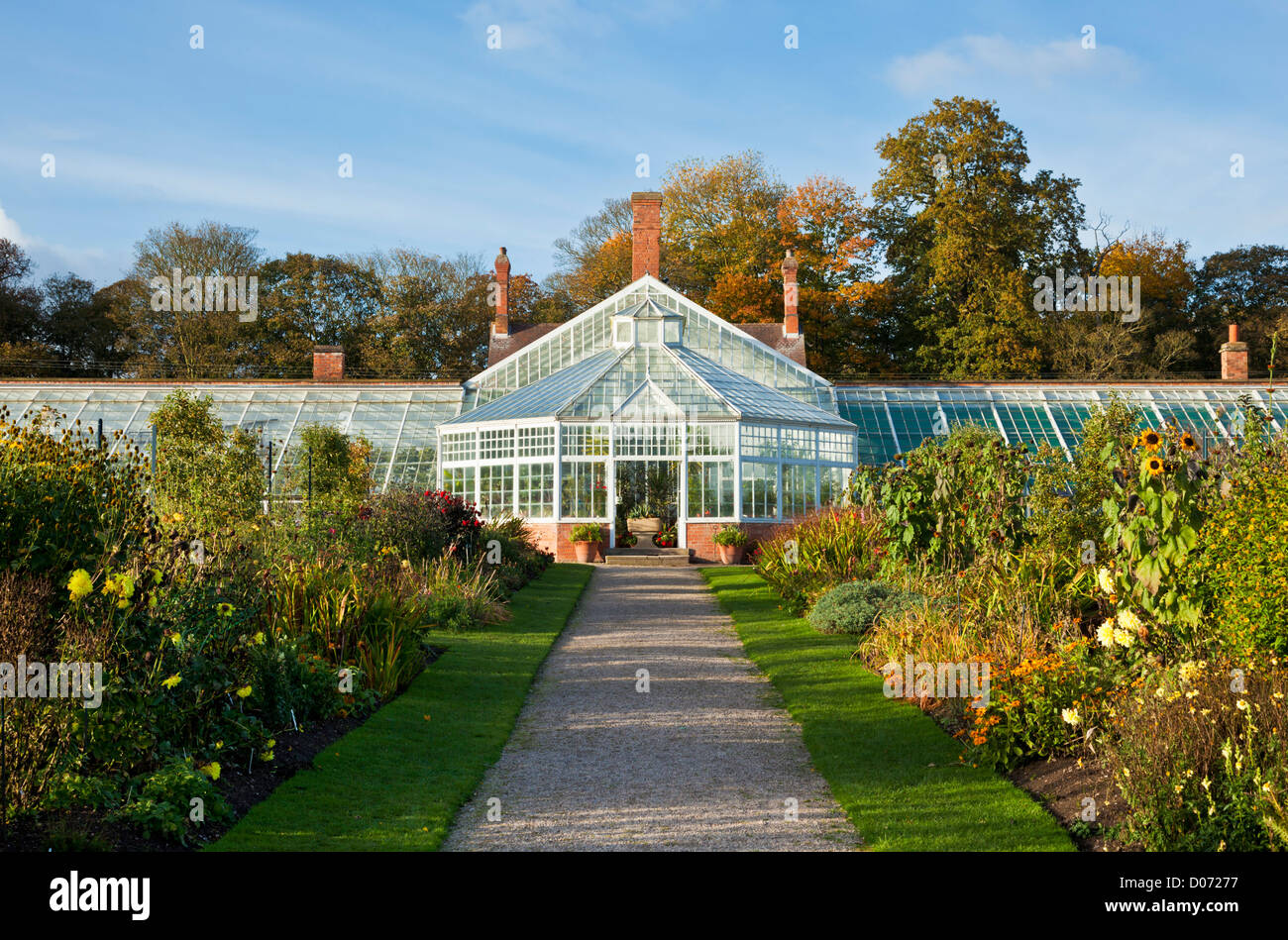 The huge renovated Victorian greenhouse in the walled garden at Clumber park Nottinghamshire England UK GB EU Europe - Stock Image