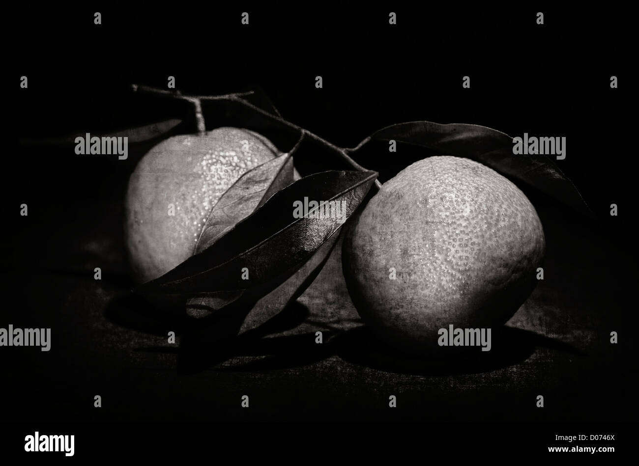 grunge image of mandarins on wood table sepia tones - Stock Image