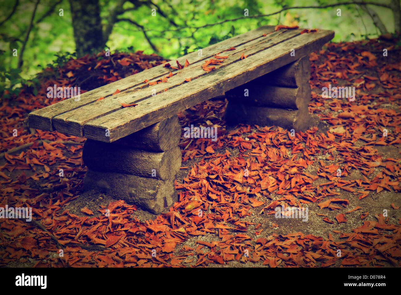 Old bench with autumn leaves, in a fall forest. - Stock Image