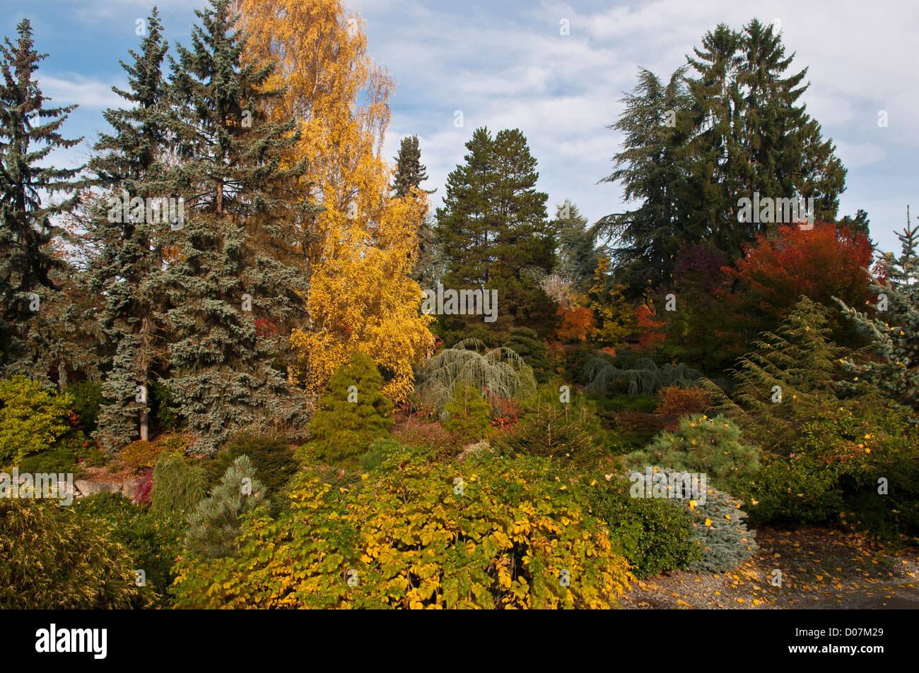 US, WA, Seattle. Kubota Gardens was started in 1927 by Fujitaro ...