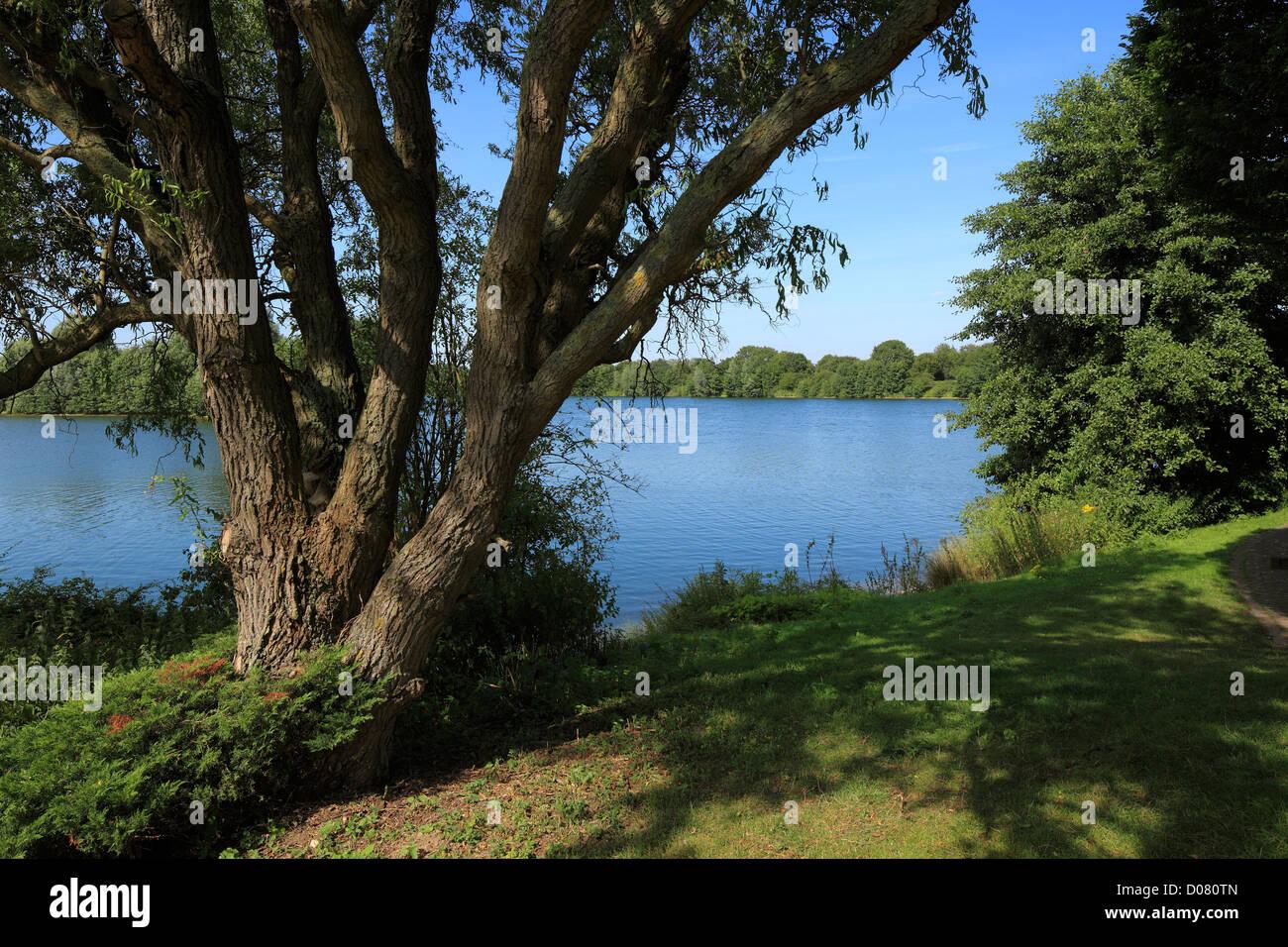 Elfrather See in Krefeld-Uerdingen, Niederrhein, Nordrhein-Westfalen Stock Photo