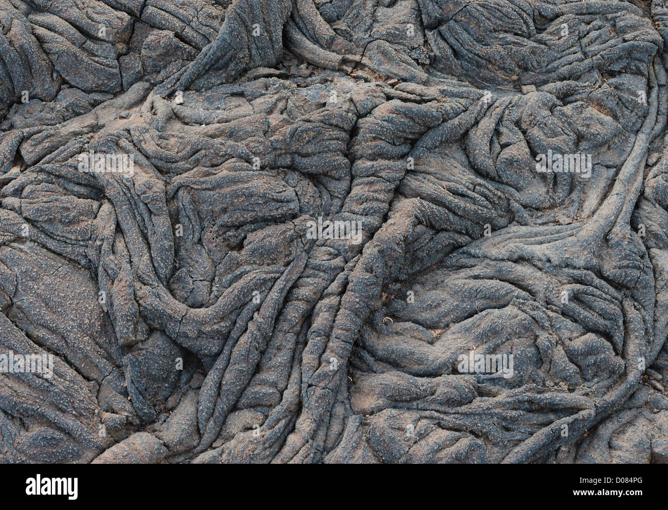 Detail of pahoehoe or ropy lava near La Restinga El HIerro, Canary Islands, Spain - Stock Image