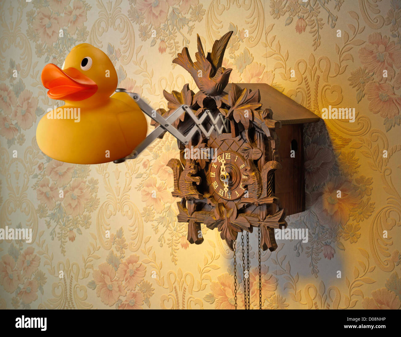 cuckoo clock with Rubber Duck coming out of Clock Stock Photo ...