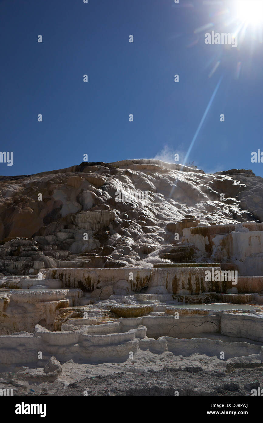 Palette Spring, Mammoth Hot Springs, Yellowstone National Park, Wyoming, USA - Stock Image