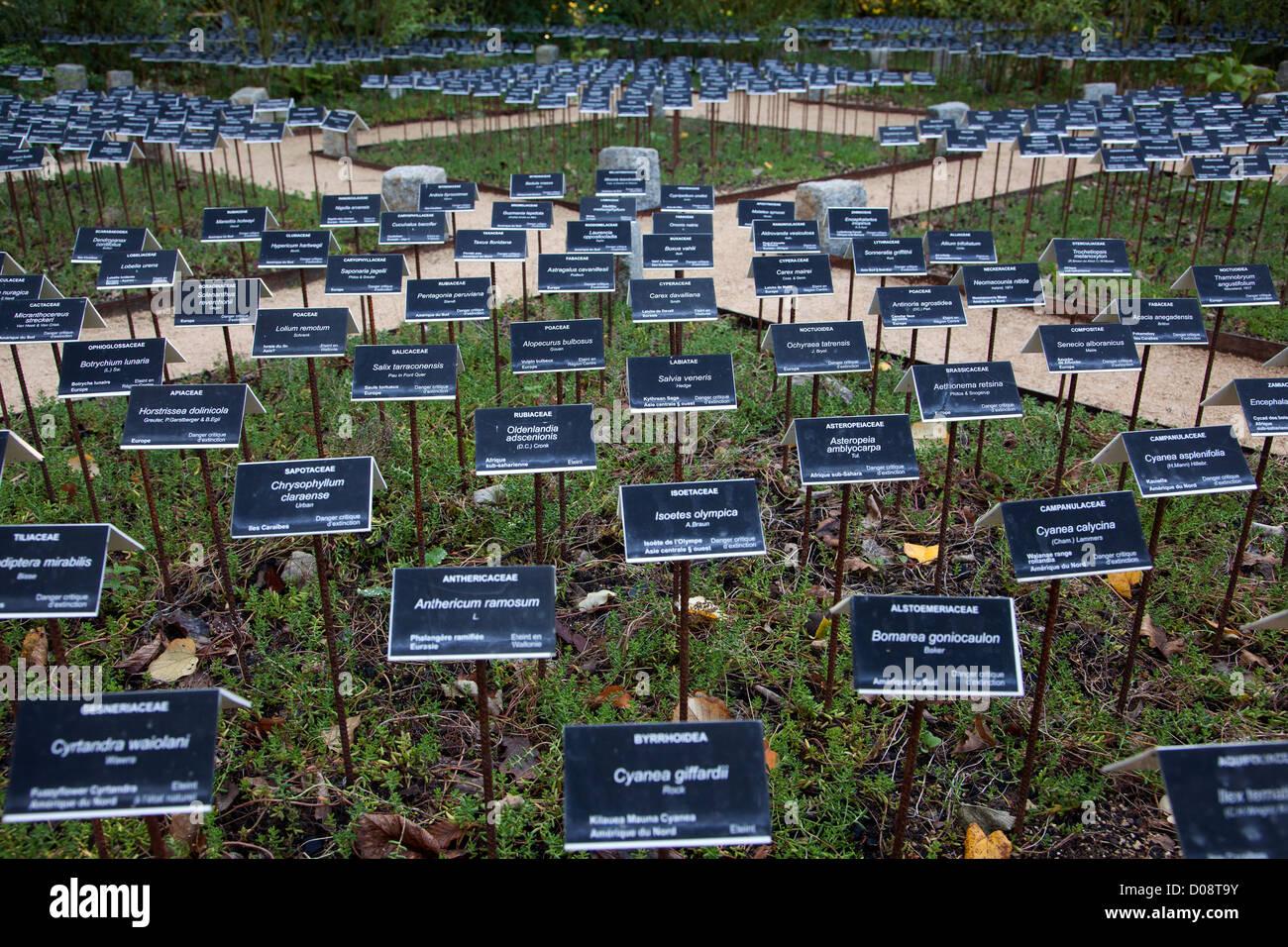 THE GARDEN DISAPPEARED PLANTS GARDENS FUTURE INTERNATIONAL FESTIVAL GARDENS 2011 CHATEAU DE CHAUMONT-SUR-LOIRE LOIR - Stock Image