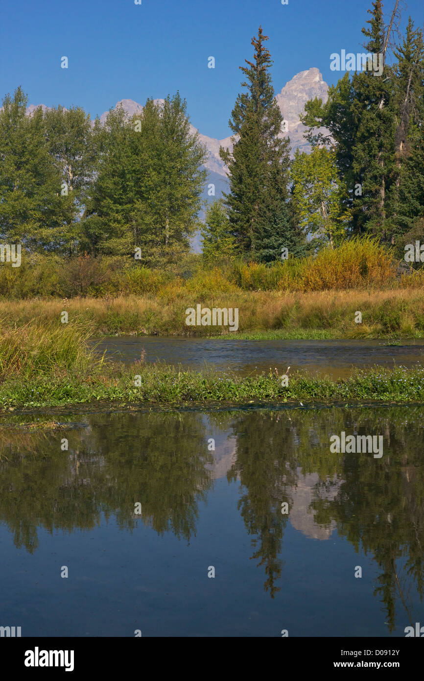 Blacktail Ponds area, Grand Teton National Park, Wyoming, USA - Stock Image