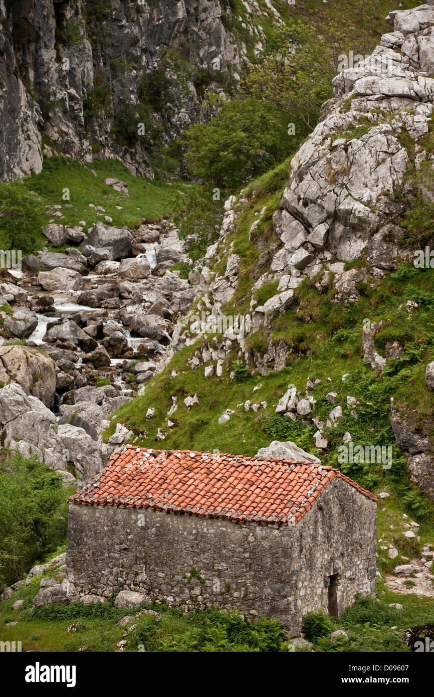 Old barn in the Rio Cares limestone gorge, Picos de Europa, Spain, Europe - Stock Image