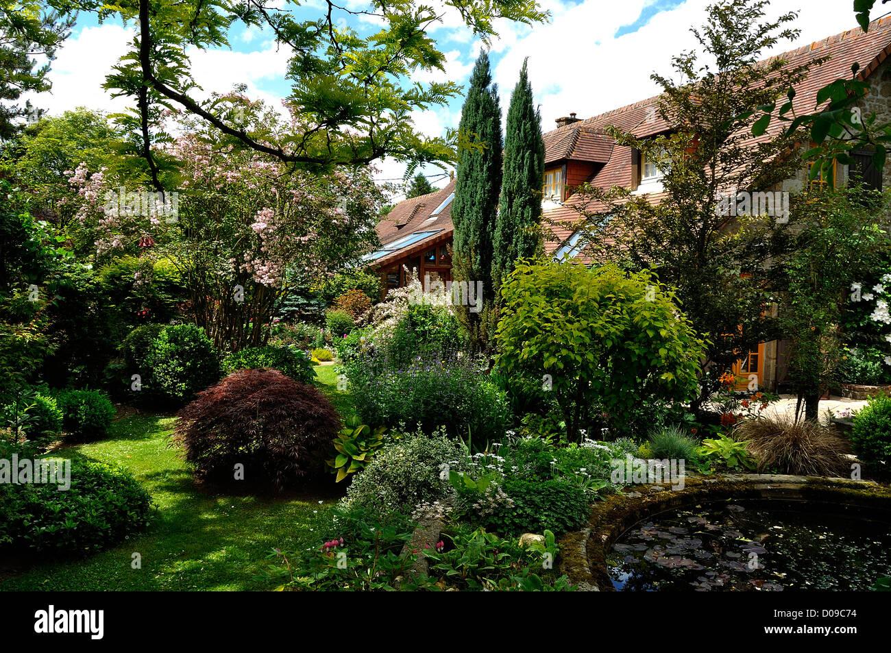 Pleasure garden with a basin and aquatic plants, Acer palmatum, hosta, boxwood, conifers, ... - Stock Image