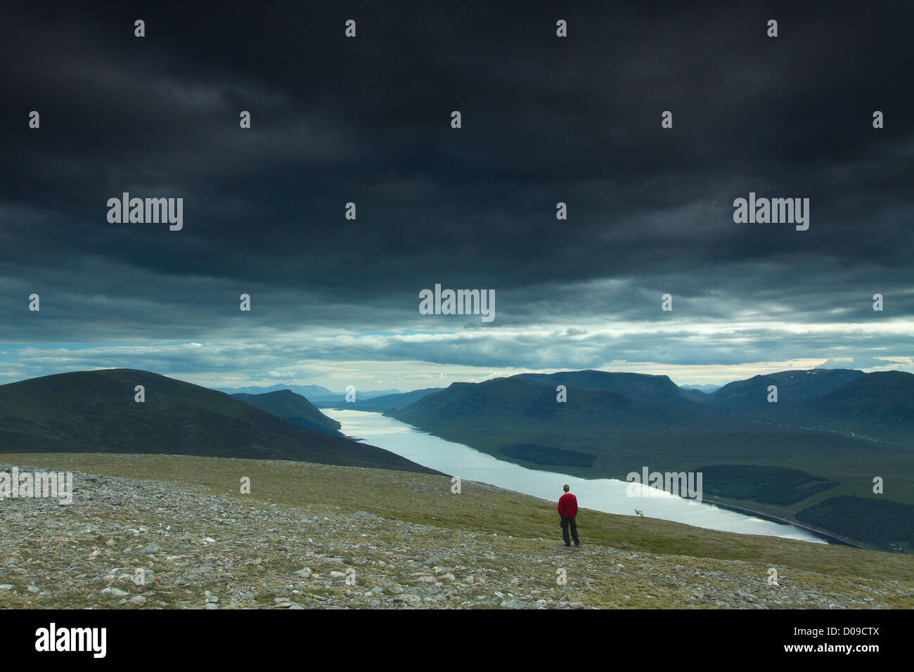 A walker on the Munro of Geal Charn above the Drumochter Pass and Loch Ericht, Monadhliath, Cairngorm National Park, - Stock Image