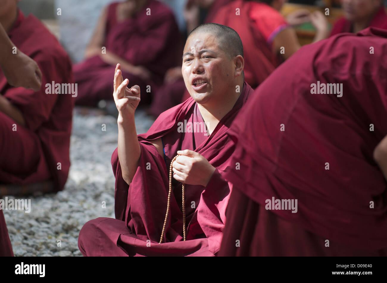 Buddhist monk makes point during debate, Drepung Monastery, Lhasa, Tibet, China - Stock Image