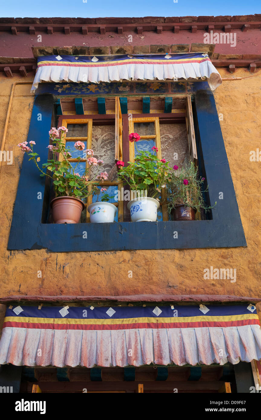 Flower pots give additional color to painted window inside the Anezamkang Nunnery, Lhasa, Tibet, China - Stock Image