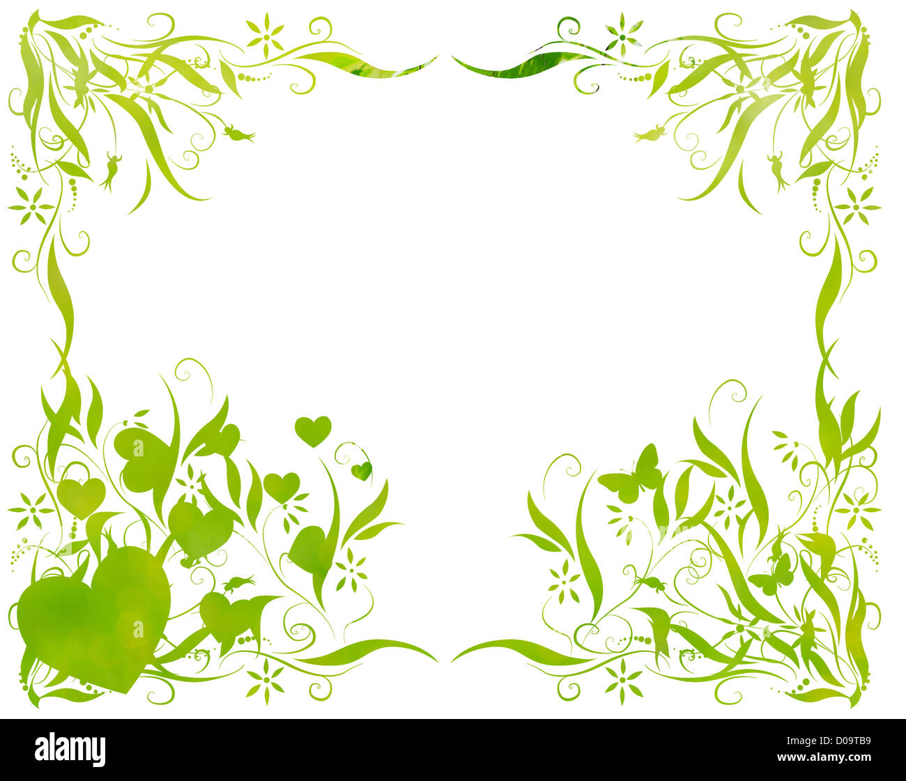 floral foliage beautiful arty background against white - Stock Image