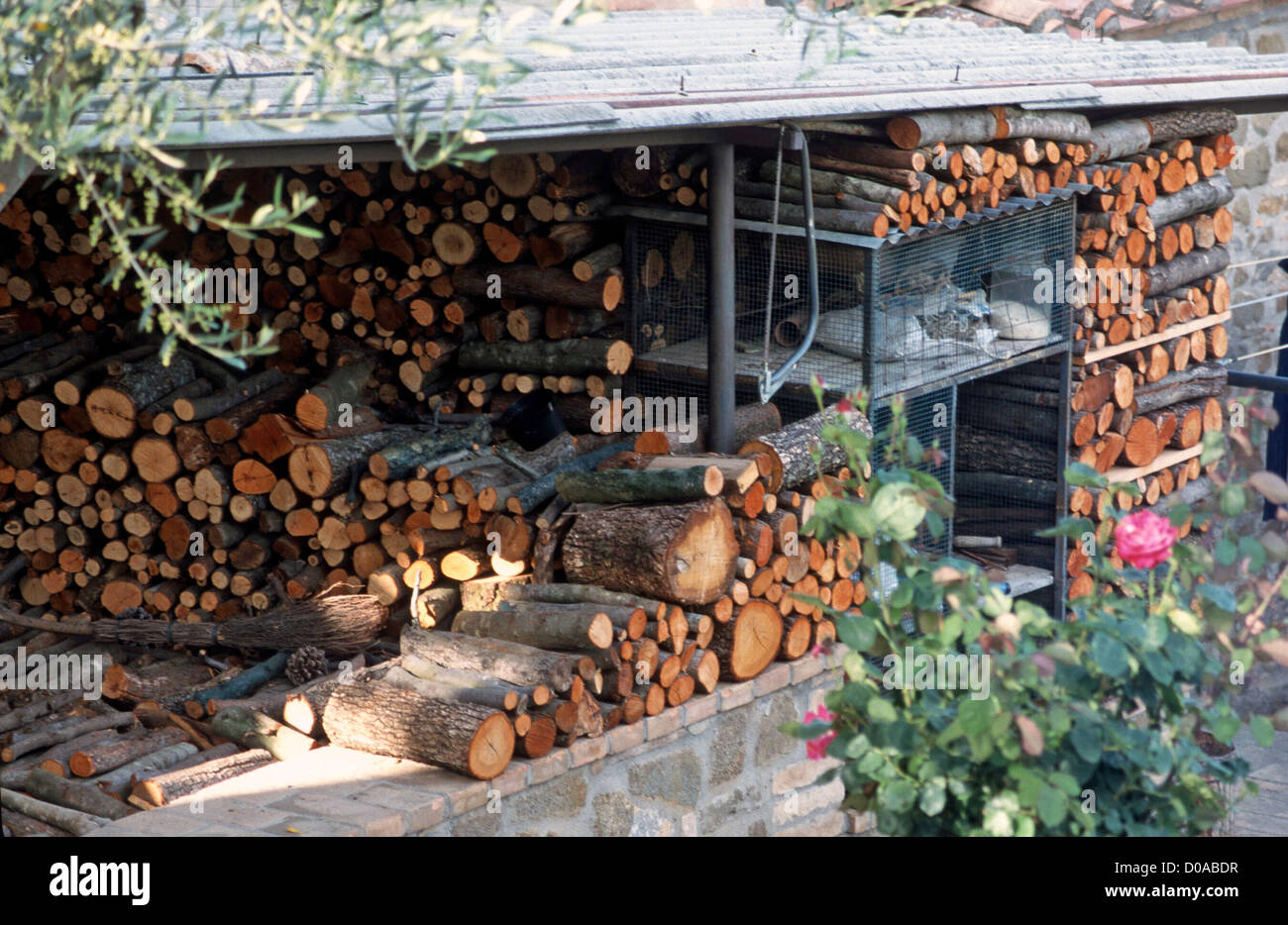 ITALY MONTALCINO- LOGS NEATLY STACKED AS WINTER FUEL WILL ENSURE WARM HOME - Stock Image