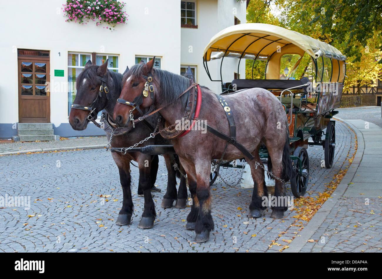 Wernigerode, Sachsen-Anhalt, Germany. Horse-drawn bus providing tours of the town. Pferde-Bus fur stadt fahrt. - Stock Image