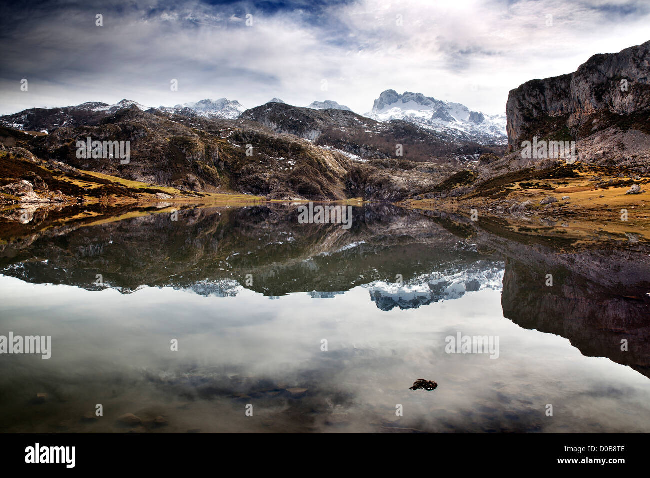 Ercina Lake Covadonga Picos de Europa Asturias Spain - Stock Image