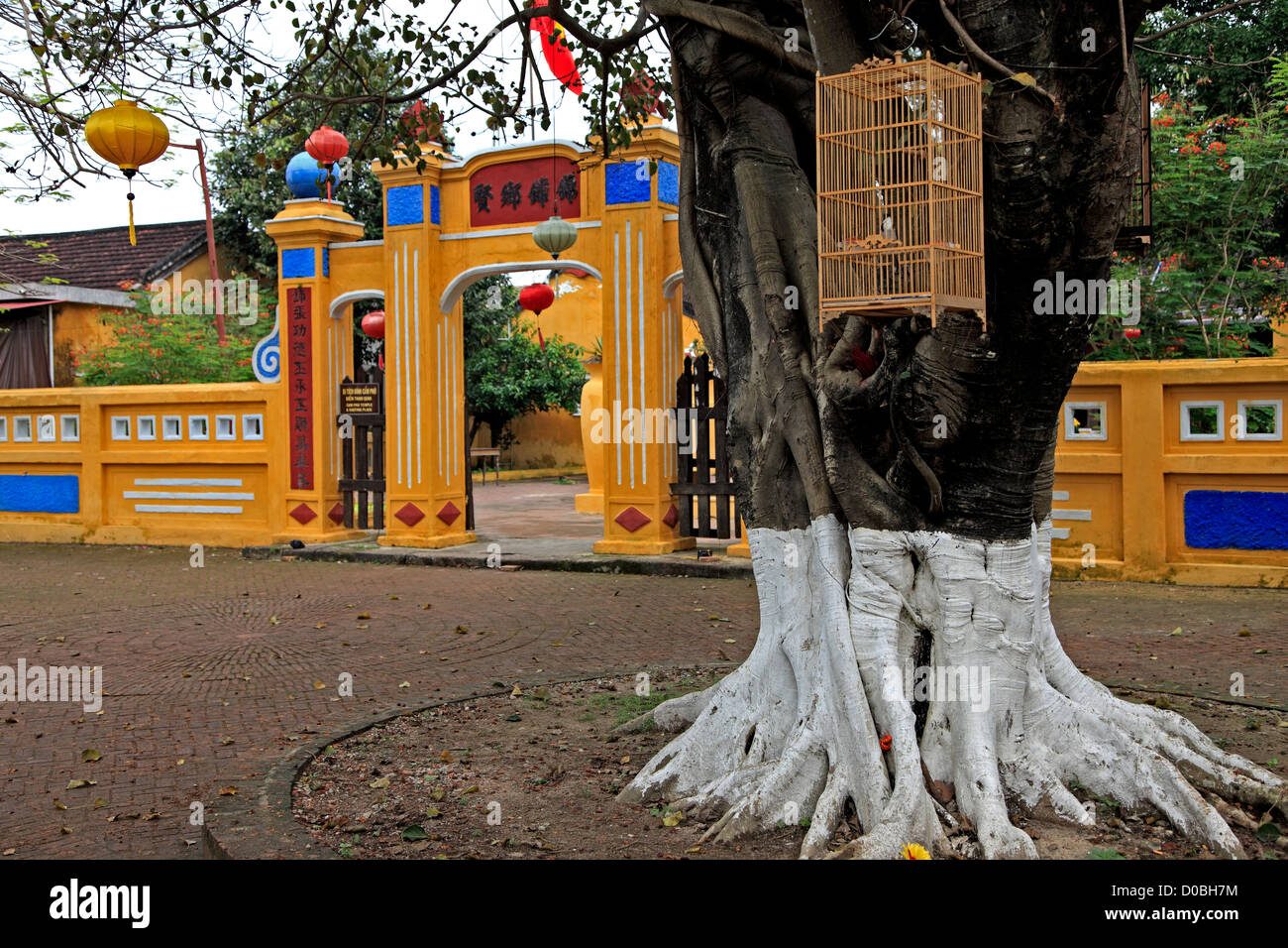 Songbird cage hanging on tree, Hoi An, Vietnam - Stock Image