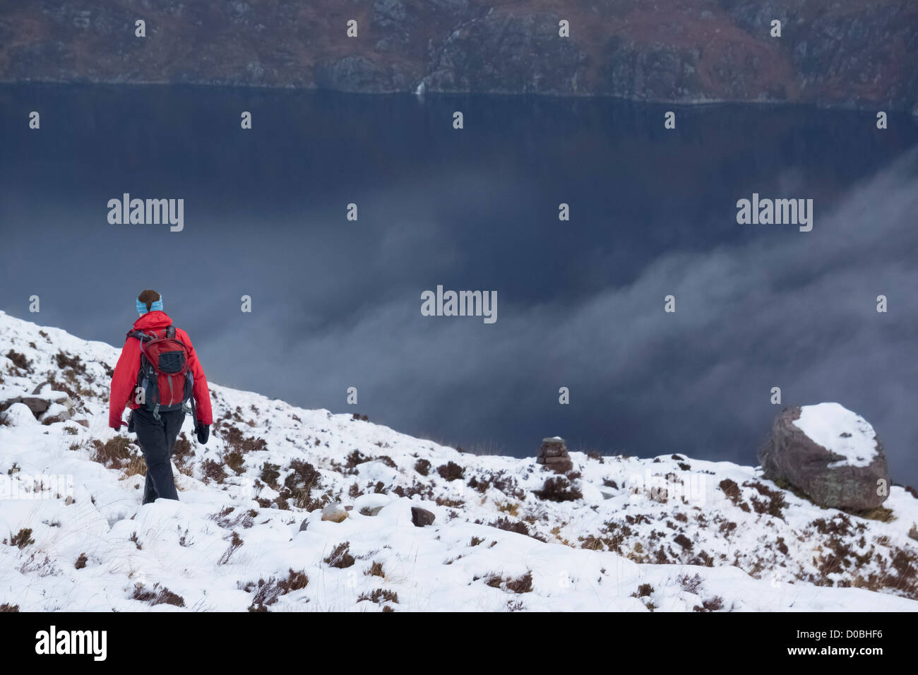 A female hiker returning to Coille na Glas-Leitire in the snow on a winters day above Loch Maree, Scottish Highlands. - Stock Image