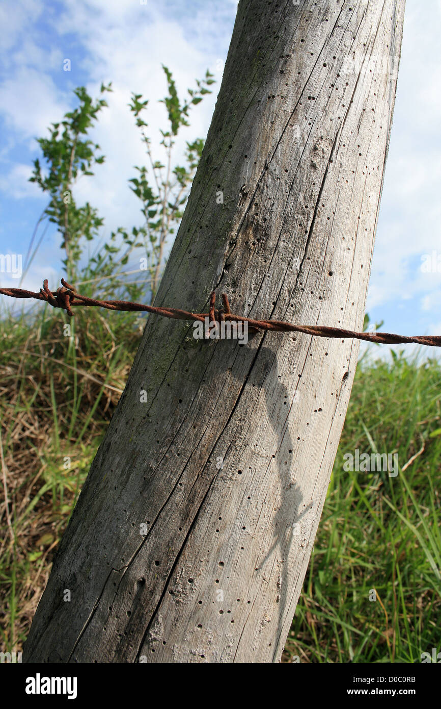 Twisted Wire Fence Stock Photos & Twisted Wire Fence Stock Images ...