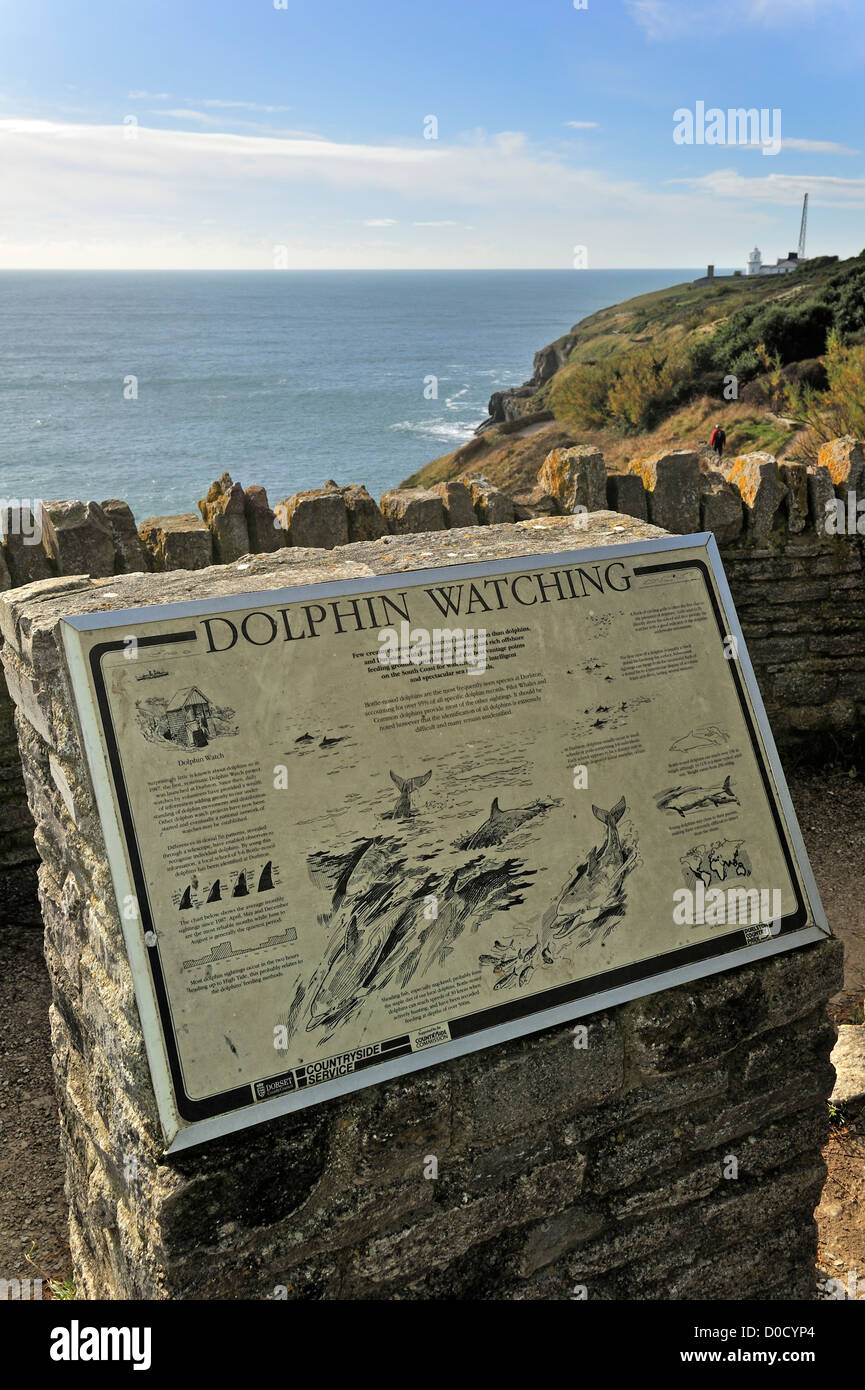 Dolphin watching information board at Durlston Head on the Isle of Purbeck along the Jurassic Coast in Dorset, South - Stock Image