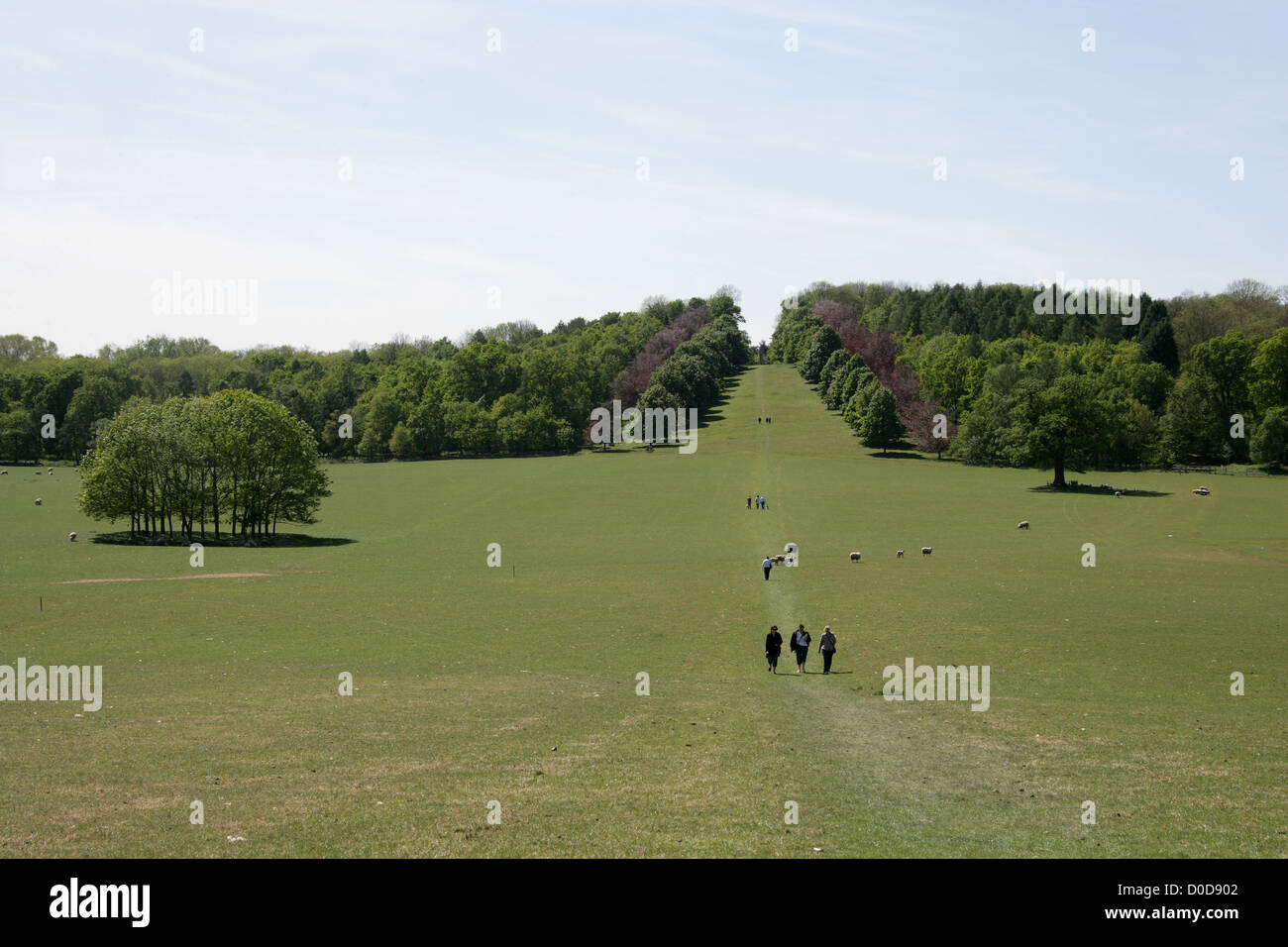 View of the Walkway to the Monument from Ragley Hall, Warwickshire, UK. Stock Photo