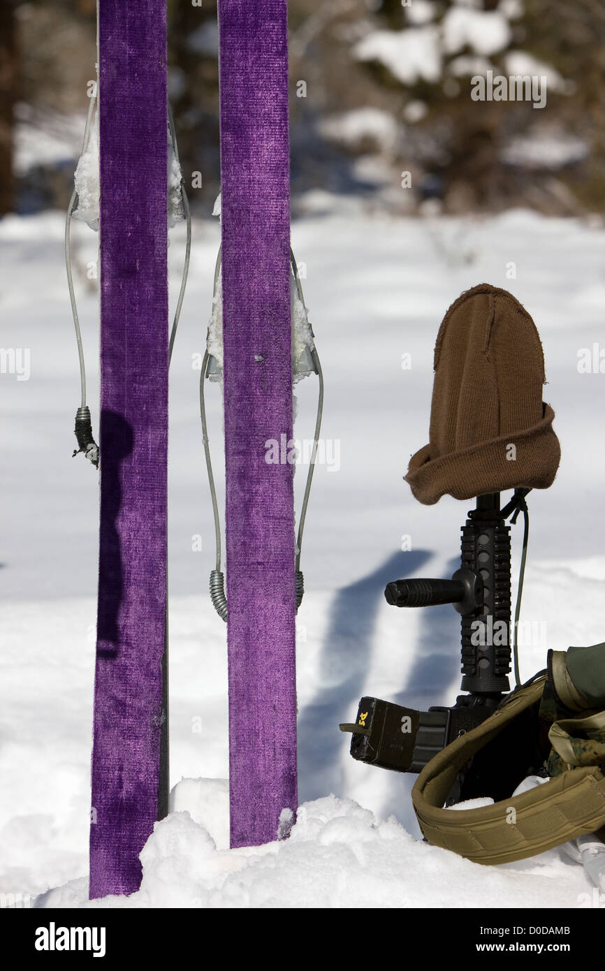 Skis and Weaponry During Mountain Sniper Training - Stock Image