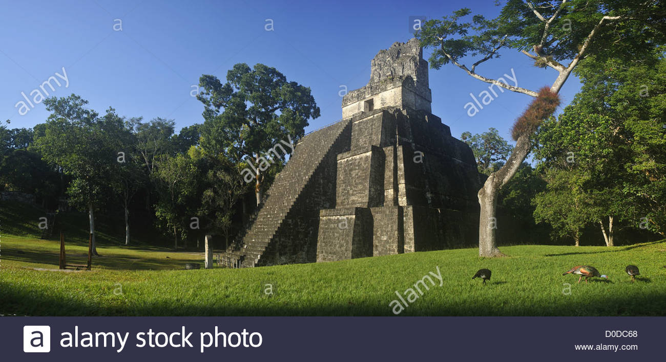 TEMPLE I OR TEMPLE GREAT JAGUAR EMBLEMATIC MONUMENT PRE-COLOMBIAN MAYAN CITY TIKAL GUATAMALA CENTRAL AMERICA - Stock Image