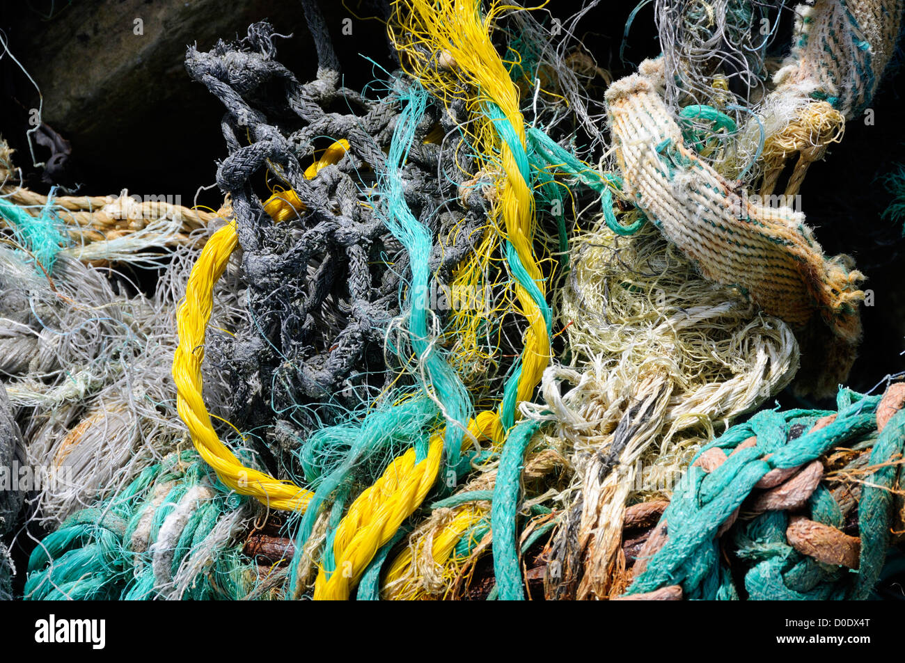 Plastic waste from fishing nets and ship's ropes tangled on the beach. Mainland, Orkney, Scotland, UK. - Stock Image