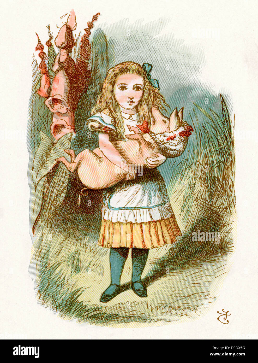 The Pig Baby, from the Lewis Carroll Story Alice in Wonderland, Illustration by Sir John Tenniel 1871 - Stock Image