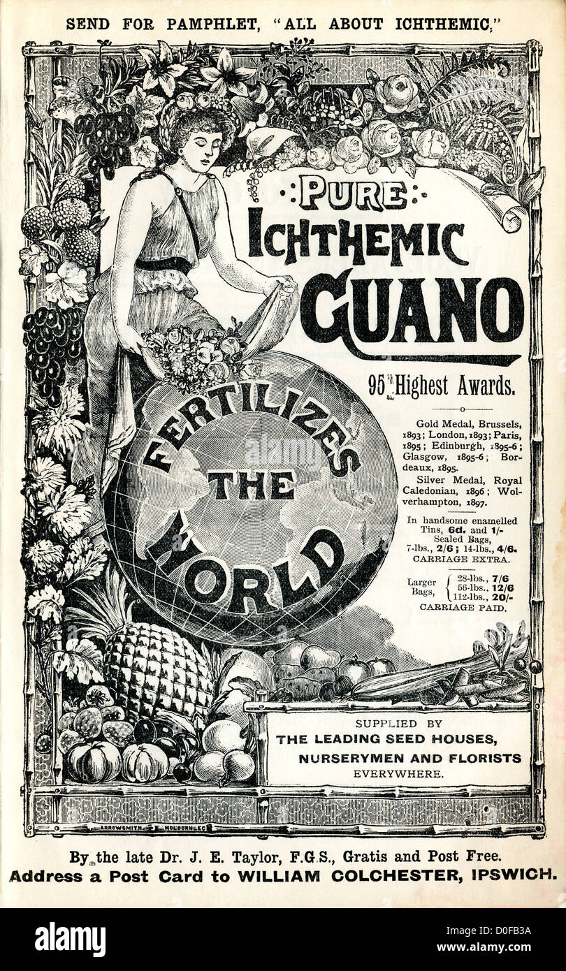 Historical advertisement for Pure Icthemic Guano fertilizer in a 19th C gardening book England UK  KATHY DEWITT - Stock Image