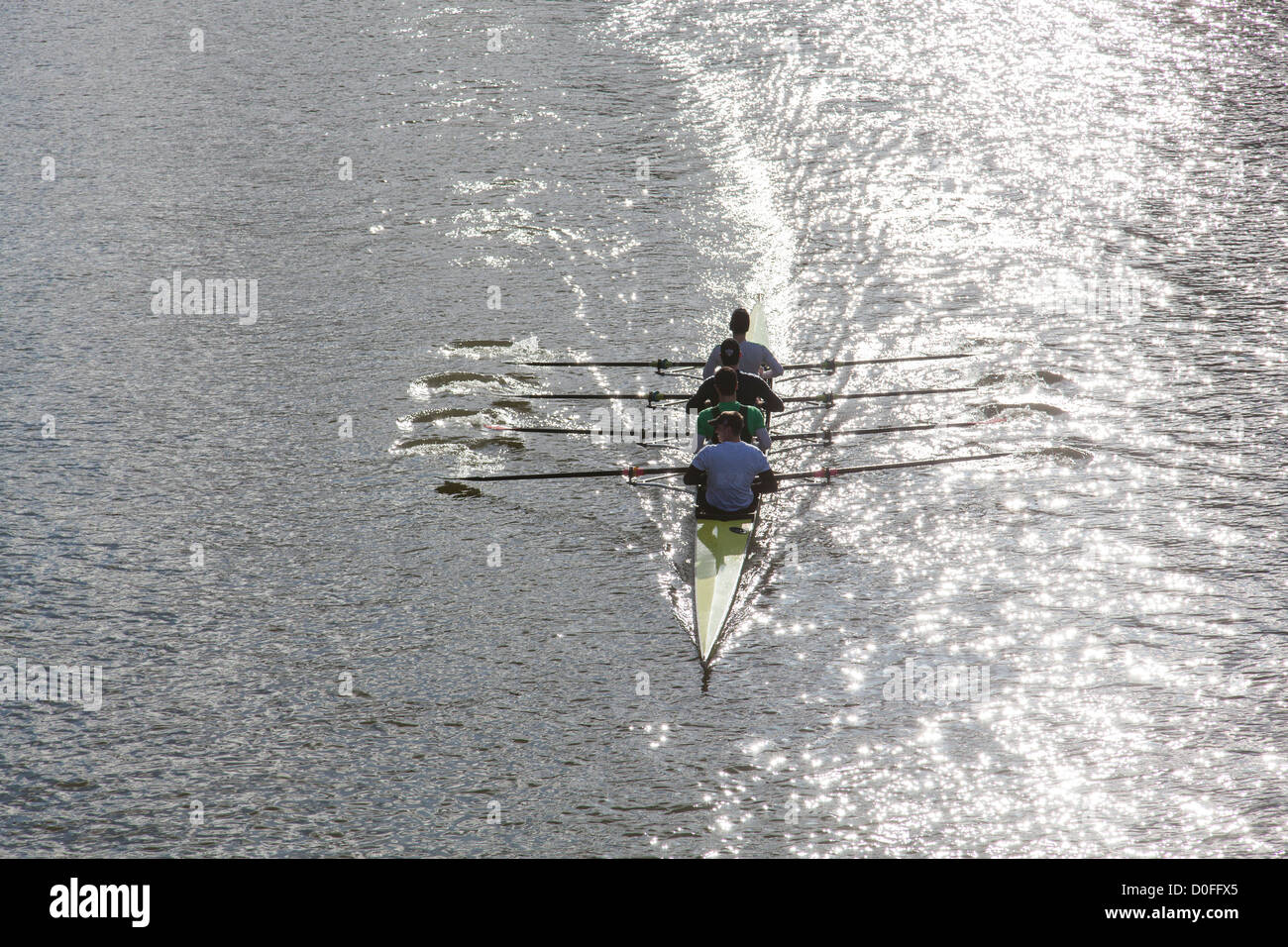 Men's coxless quad sculls, rowing on a sunlit river in the Head of the River Race, Bristol, February 2012. - Stock Image