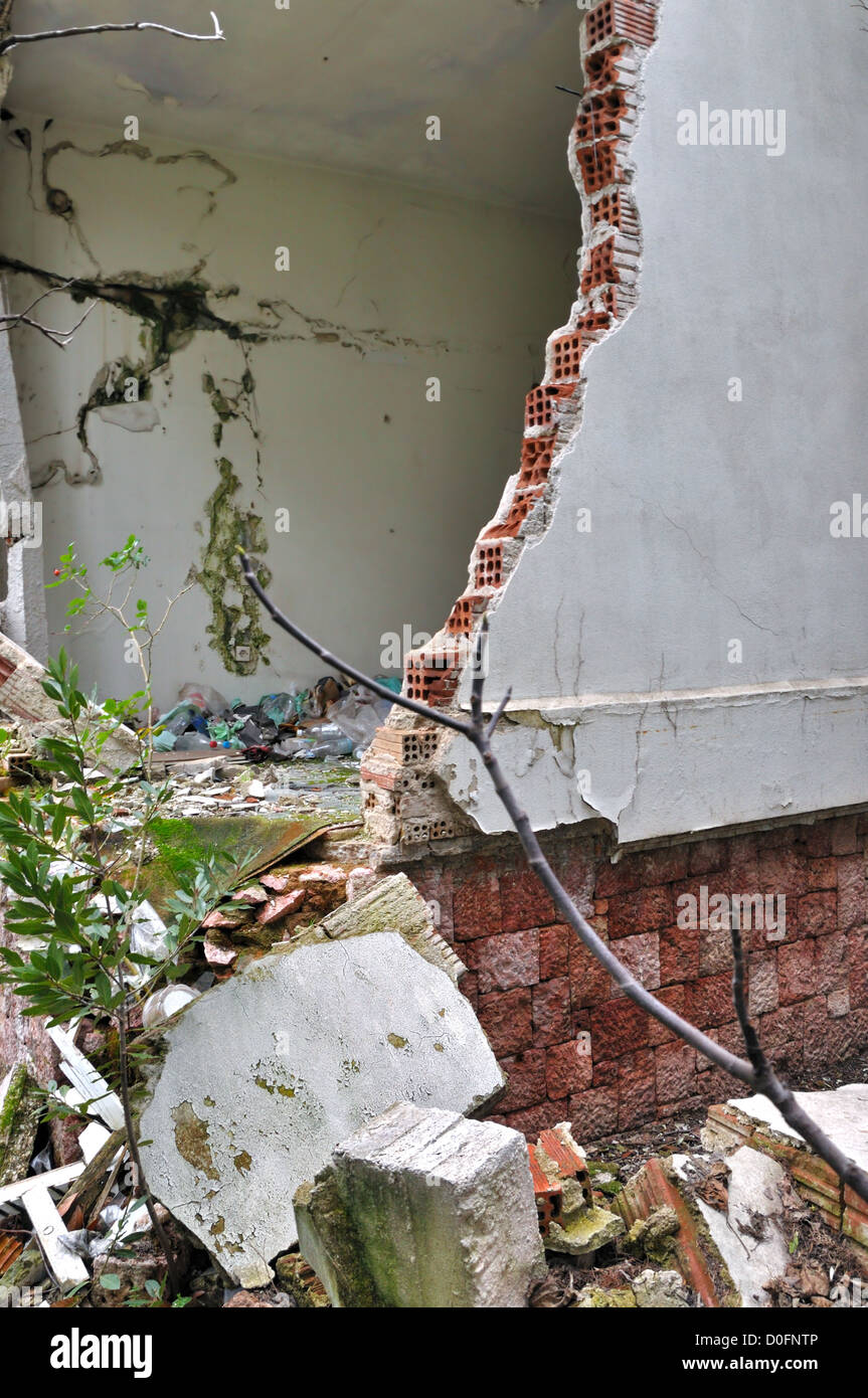 Plants growing through the broken wall of a ruined house. - Stock Image